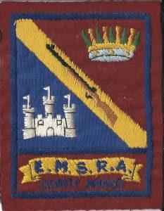emsra county award badge
